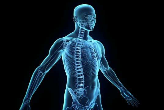 best Amazing facts about human body in hindi